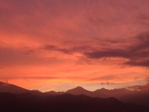 アズミノイロ《安曇野彩》ピンク色の世界